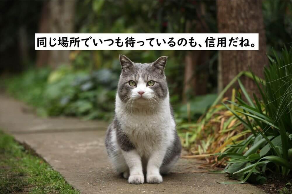 猫 お座り