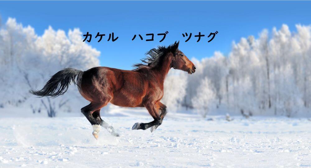 駆ける馬 冬