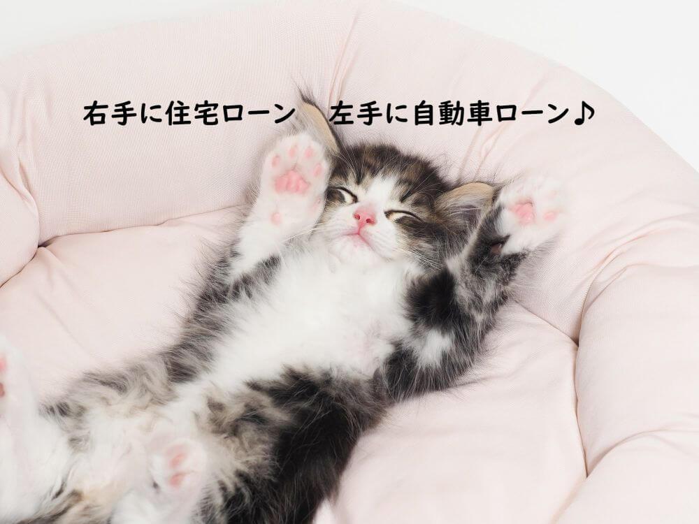 万歳して寝る猫