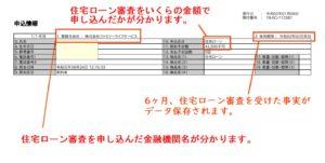 CIC 信用情報 サンプル